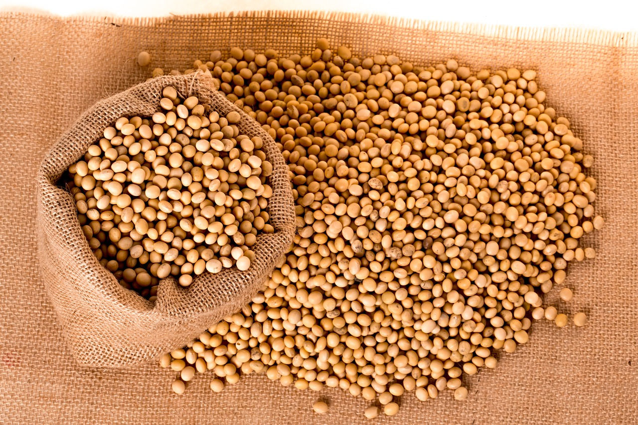 Agro-processing soya beans